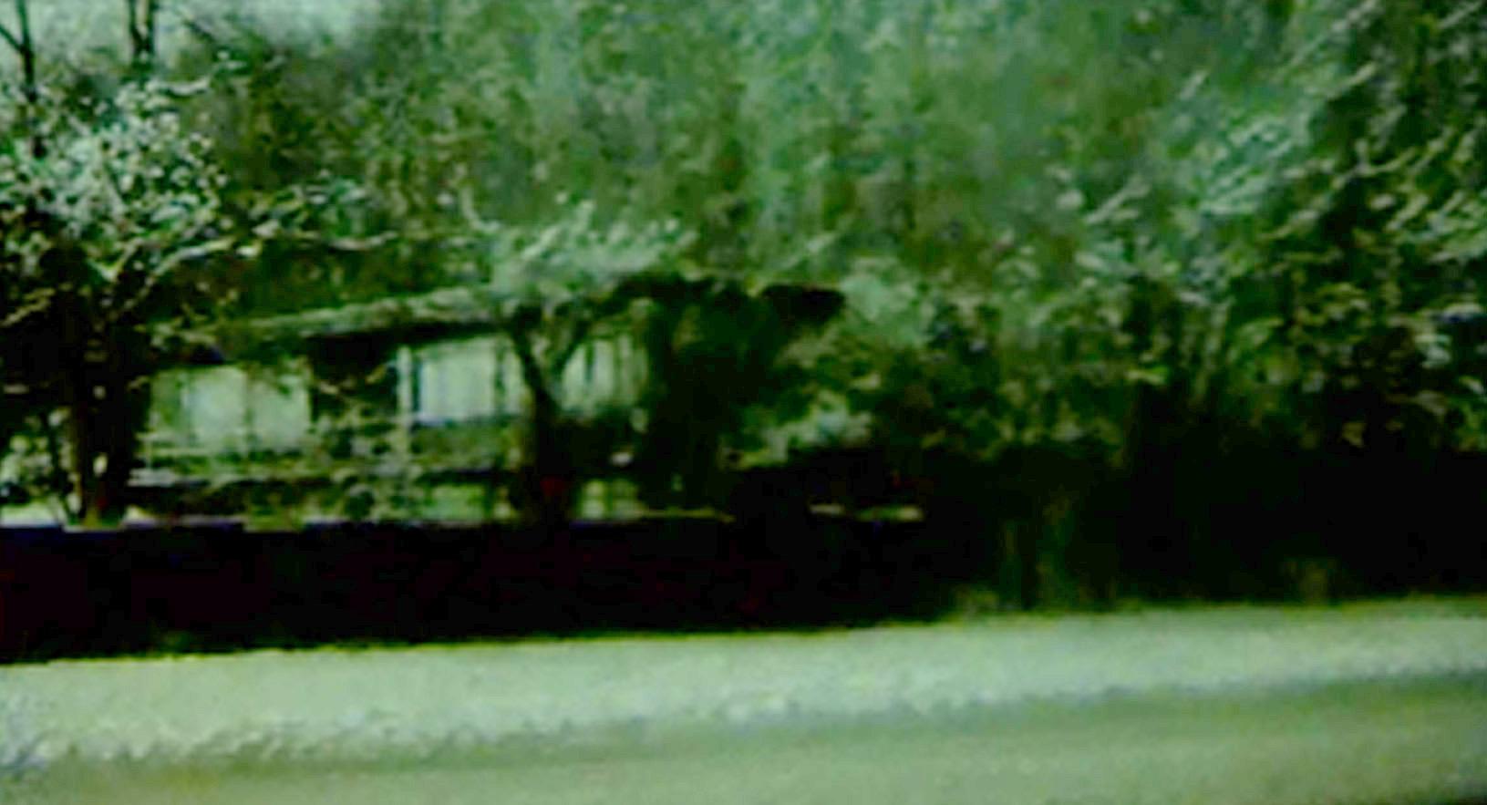 Hestehavevej 2b december 1967